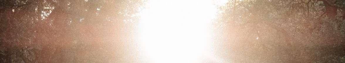 הוֹצָאָה לָעוֹר…/זאביק זהבי